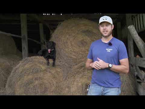 Radio Bristol Farm Report - Valley and Ridge Farms