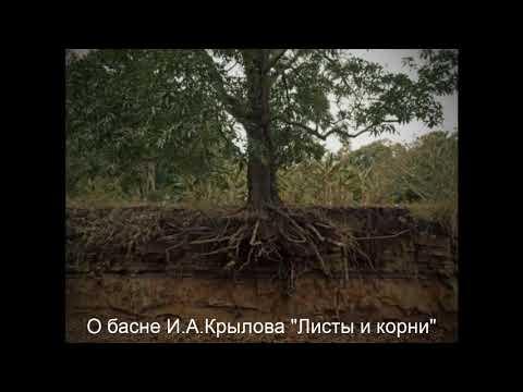 """О басне И.А.Крылова """"Листы и корни"""""""
