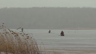 Рыбалка в тамбове форум фион 68 rubyrint
