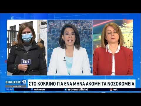 Κορονοϊός | Στο κόκκινο για ένα μήνα ακόμη τα νοσοκομεία | 06/03/2021 | ΕΡΤ