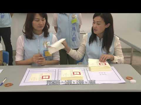 公投開票過程