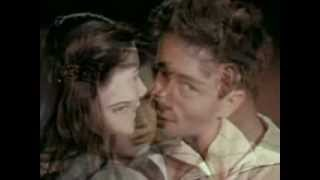 James Dean - Never Gone