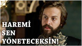 """Muhteşem Yüzyıl Kösem - Yeni Sezon 24.Bölüm (54.Bölüm)   """"Haremi Sen Yöneteceksin!"""""""