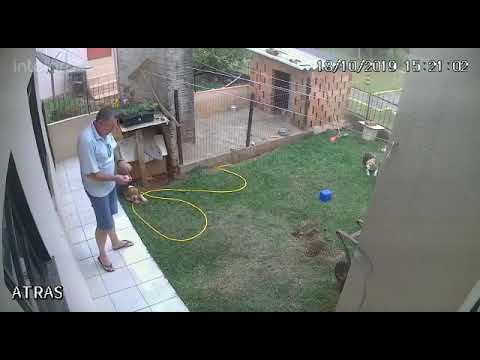 Homem tenta matar baratas e acaba explodindo o quintal da própria casa