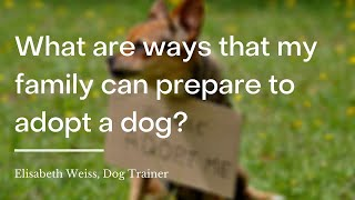 How can my family prepare to adopt a dog?   wikiHow Asks a Professional Dog Trainer