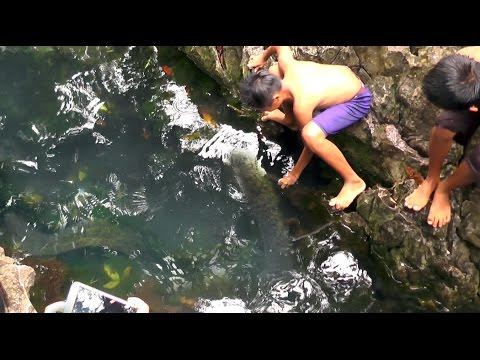 Video My TRIP...OBJEK WISATA TILANGA' ,  SARIRA ,TANA TORAJA