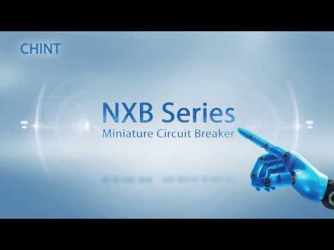 Chint NXB introduce