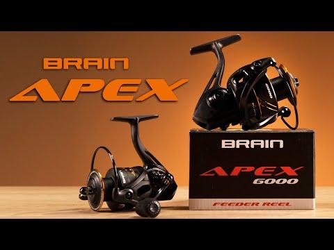 Brain Apex 20'