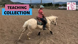 GETTING A HORSE TO COLLECT [barrel Racing Tips]