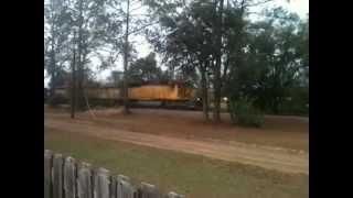 Trains in my backyard #1