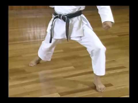Shotokan Karate Complete Guide by Hirokazu Kanazawa Vol 1