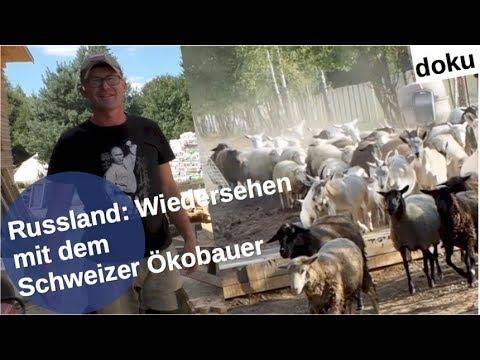 Russland: Wiedersehen mit dem Schweizer Ökobauer [Video]