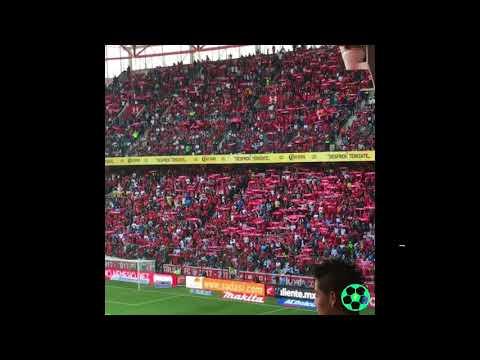 """IMPRESIONANTE: el recibimiento al Toluca en la semifinal vs Tijuana"" Barra: La Perra Brava • Club: Toluca"