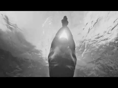 Acqua Di Gio Hombre Giorgio Armani Eau de Toilette
