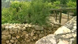 Мир Библии - 01. География, климат и сельское хоз...
