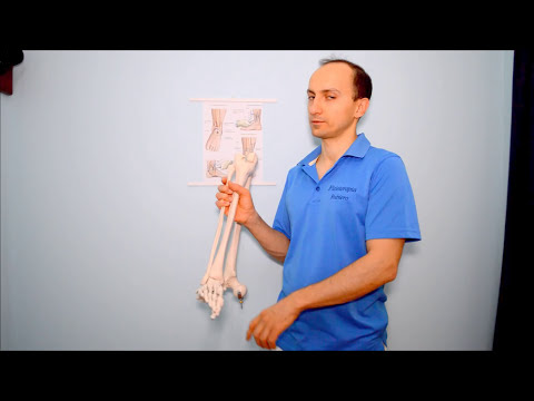 Gelatina aiuto articolazioni