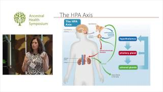 Lifestyle and Autoimmune Disease — Sarah Ballantyne, Ph.D. (AHS14)