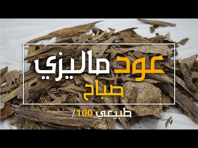 2f12578fe عود ماليزي صباح سوبر
