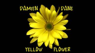 Damien Dane - Yellow Flower (KT Tunstall Cover)