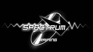 Spectrum Soundtrack - Training