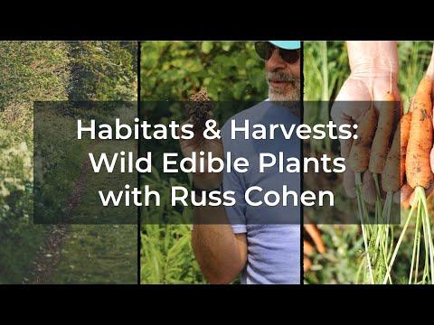 Wild Edible Plants 2021