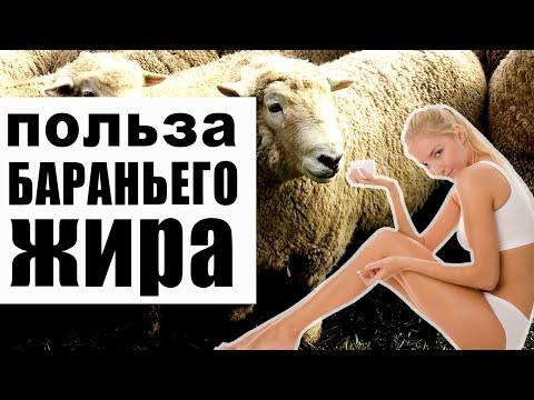 , title : 'Курдюк или бараний жир - польза и чем отличается от свиного