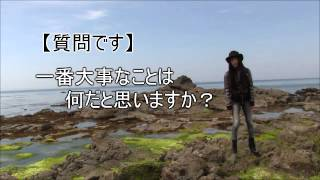 静岡県の開運スポット/動画で見るパワースポット