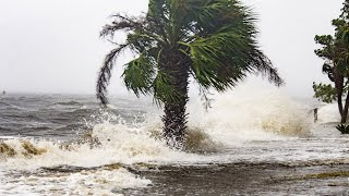 Live view of Hurricane Michael from Florida