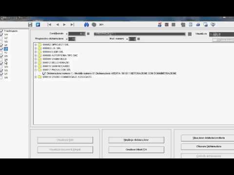 Preview video DICHIARAZIONE IVA - RANOCCHI GIS