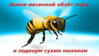 Подкормка пчел сухим молоком