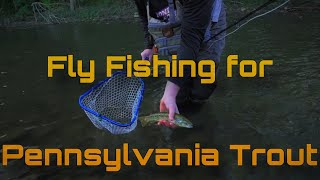 Fly Fishing for Trout in Pennsylvania | PA Fly Fishing