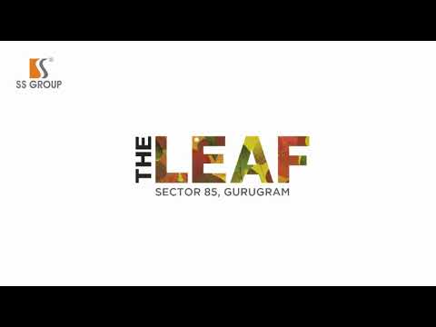 SS  The Leaf