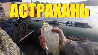 Н.. гончаров рыбная ловля