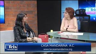Entrevista con Fernanda Tapia sobre caso abuso sexual infantil Colegio Tlatelli Tepoztlán