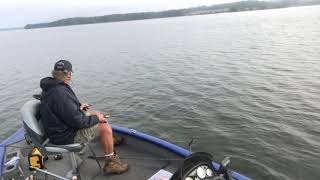 Catching Crappie & Perch on Lake Monticello