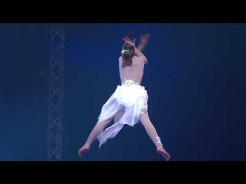 Sky angels gevallen tijdens circus act in Carré