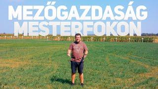ÍGY KELL CSINÁLNI! | A Munka Hősei: Mezőgazdaság Mesterfokon