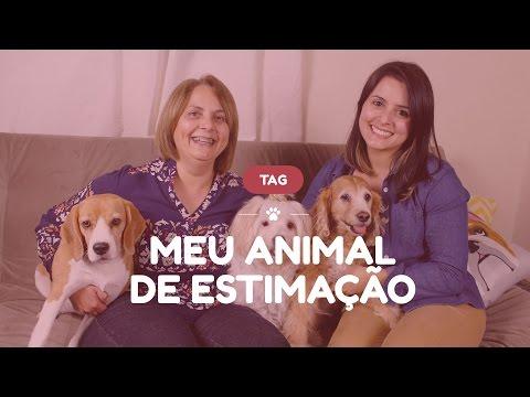 TAG: Meu Animal de Estimação