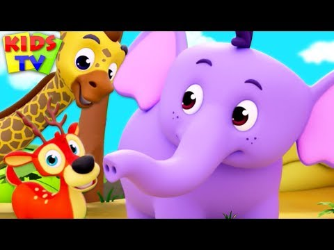 Children's Nursery Rhymes & Kids Songs | Cartoon Videos for Babies