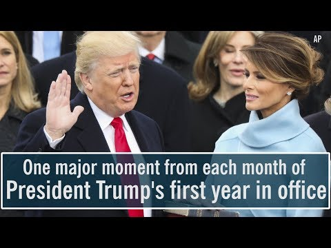 President Donald Trump's first year in office