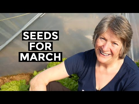 What to Sow in March: Outdoors in the Vegetable Garden