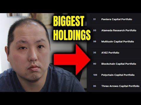 Bitcoin piniginės rinkos dalis