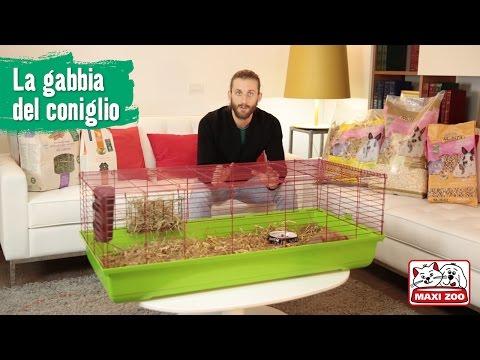 TUTORIAL: Preparare la gabbia del coniglio | Maxi Zoo