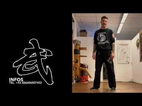 WingChun Online Kurs 1 Kungfu Wien23