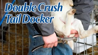 Double Crush Tail Docker