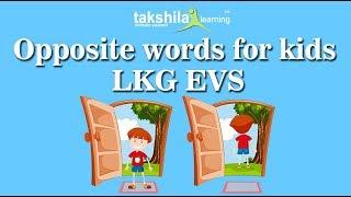 General Knowledge - LKG - YouTube