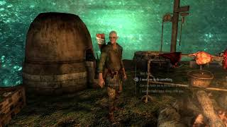 Skyrim Camp In The Sphere PS4 Mod