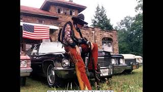 David Allan Coe - Longhaired Redneck/Rides Again (CD)