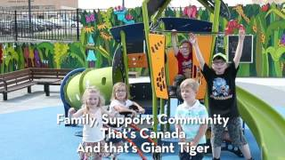 Giant Tiger Stores Limited and the two Belleville Giant Tiger stores presented