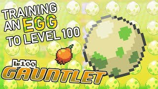 466 - Training an Egg to Level 100 Before it Hatches!! The Level 100 Gauntlet